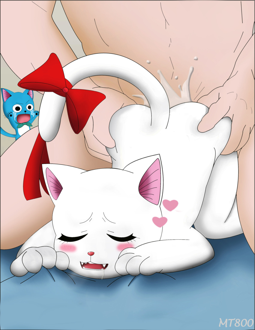 fairy erza tail cry bunny dragon What are you gay gif